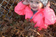 methodist elc - leaves